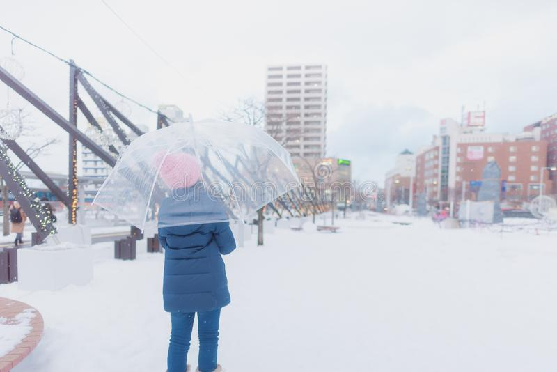Japansk flicka i vinter arkivfoton