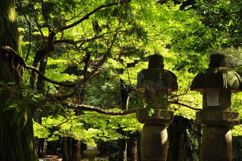 Japansk miljö arkivfoton
