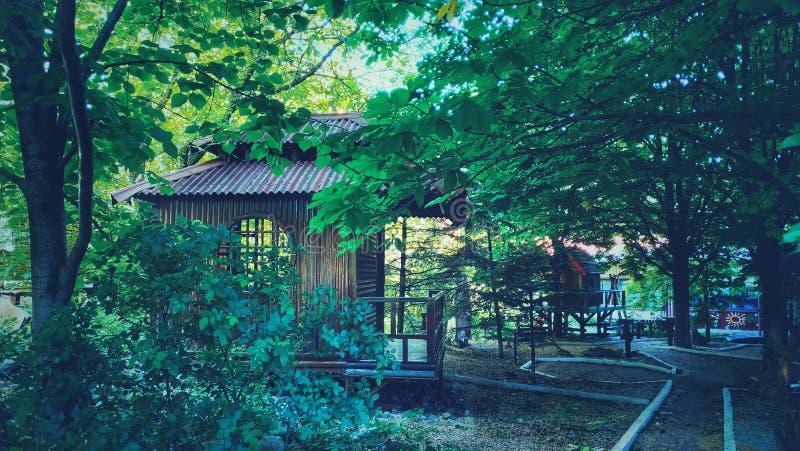 Japansk paviljong i tr?dg?rden royaltyfri fotografi