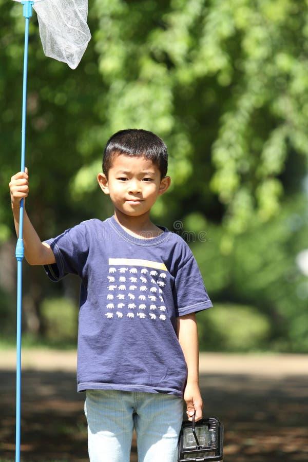 Japansk pojke som samlar krypet royaltyfria foton