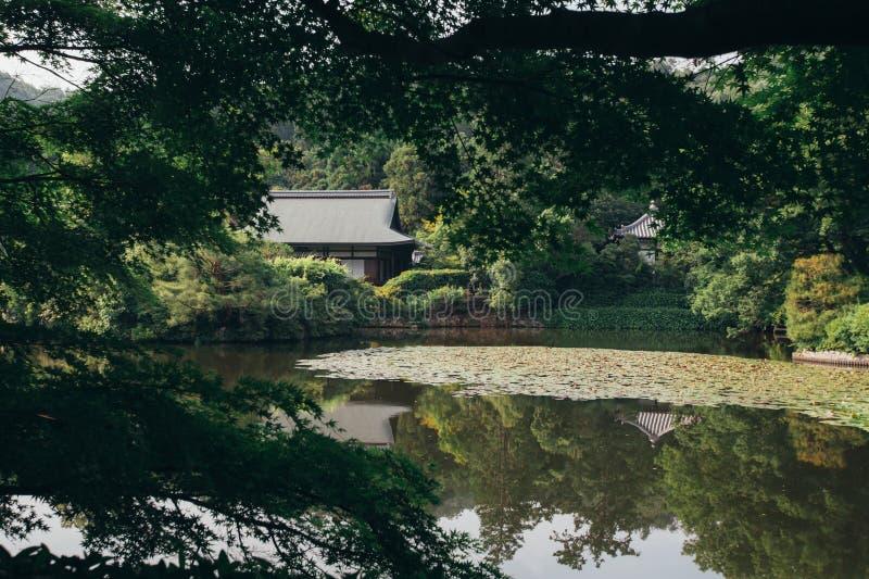 Japansk tempel med trädet för japanska lönnar royaltyfri bild