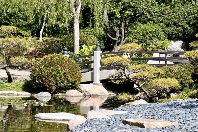 Japansk trädgård med bro- och koidammet royaltyfri fotografi