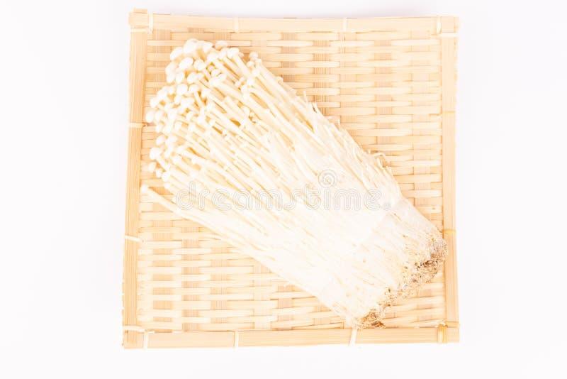 Japanska champinjoner på vit royaltyfria bilder
