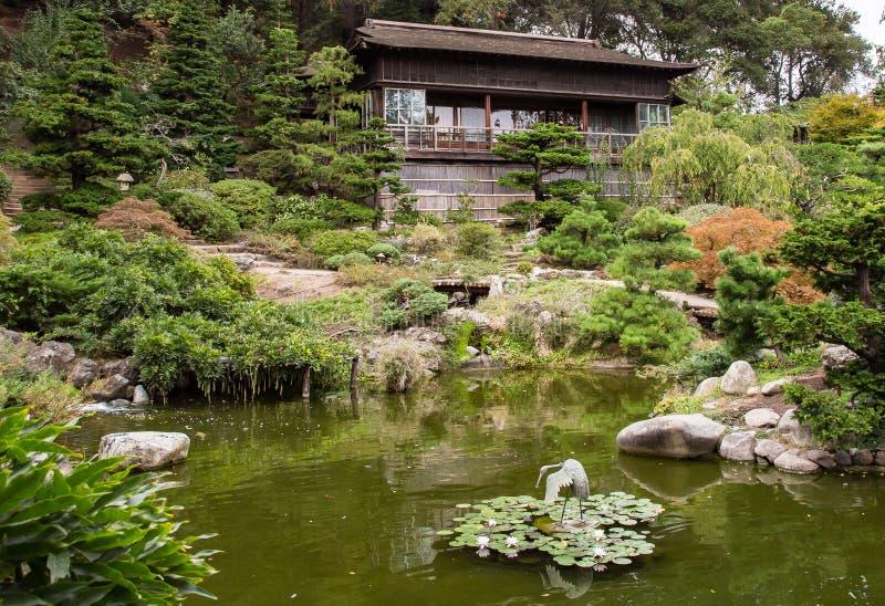 Japanskt hus och damm för teträdgård royaltyfri bild