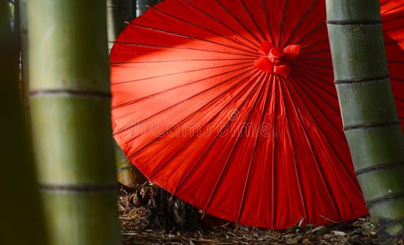 Japanskt paraply royaltyfria bilder