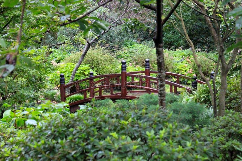 Japanträdgård i Montevideo royaltyfri foto