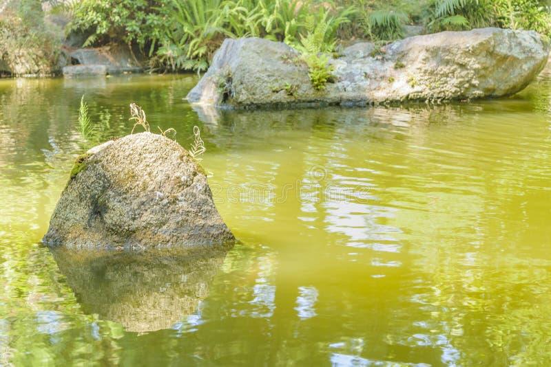 Japanträdgård, Montevideo, Uruguay royaltyfri bild
