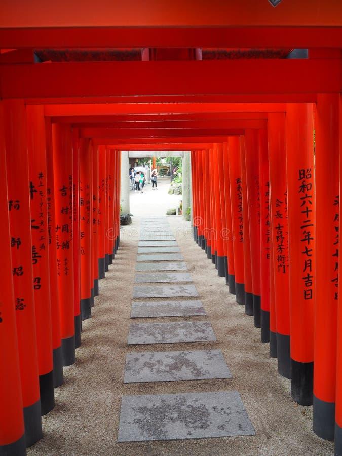 Japońskie świątyni Torii bramy zdjęcia royalty free