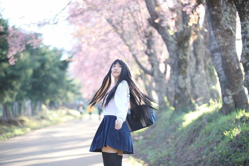 Japończyk dziewczyny szkolna suknia patrzeje Sakura kwiatu natury przejście fotografia stock