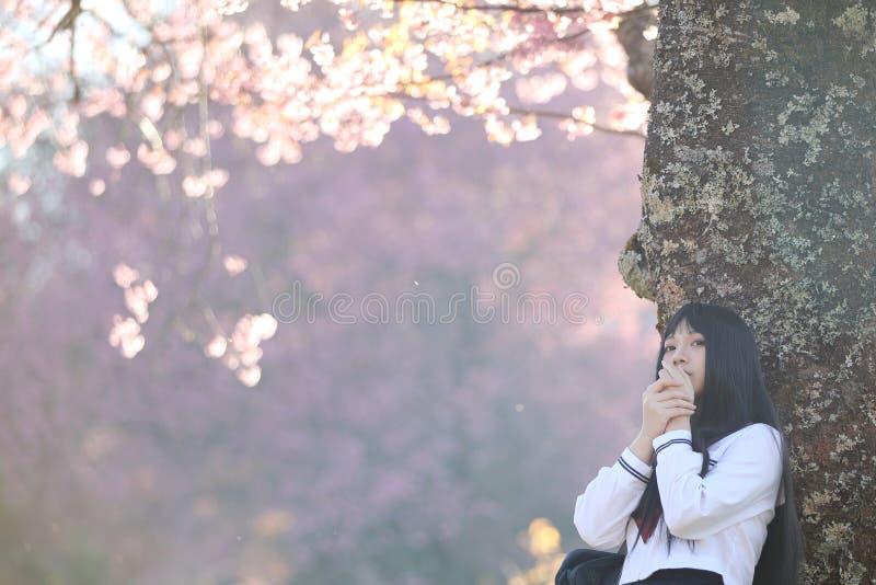 Japończyk dziewczyny szkolna suknia patrzeje Sakura kwiatu natury przejście obraz royalty free