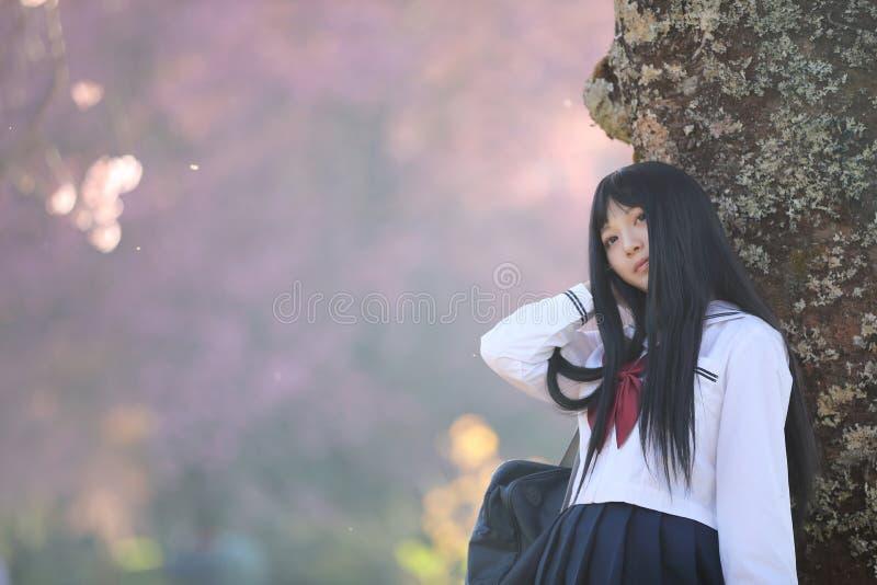 Japończyk dziewczyny szkolna suknia patrzeje Sakura kwiatu natury przejście fotografia royalty free