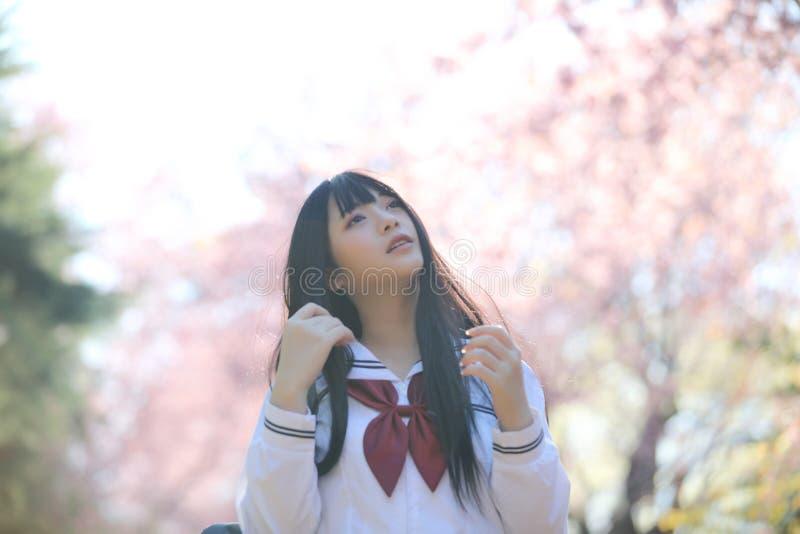 Japończyk dziewczyny szkolna suknia z Sakura kwiatu naturą fotografia stock