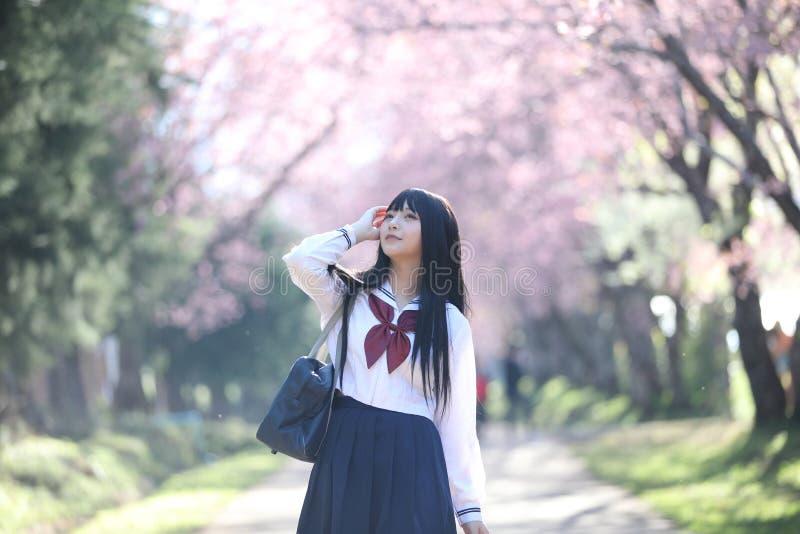 Japończyk dziewczyny szkolna suknia z Sakura kwiatu naturą obraz royalty free