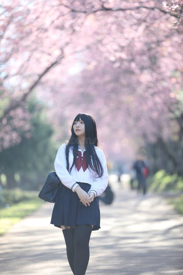 Japończyk dziewczyny szkolna suknia z Sakura kwiatu naturą obrazy royalty free