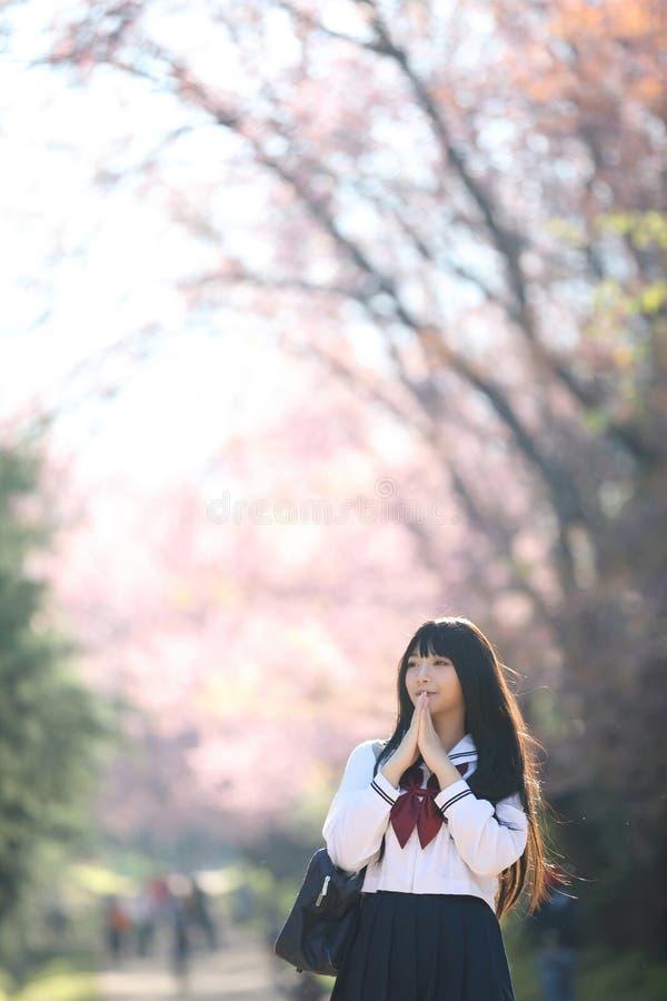 Japończyk dziewczyny szkolna suknia z Sakura kwiatu naturą fotografia royalty free