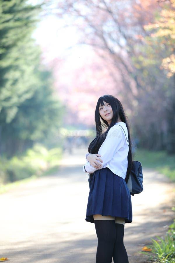 Japończyk dziewczyny szkolna suknia z Sakura kwiatu naturą zdjęcia stock
