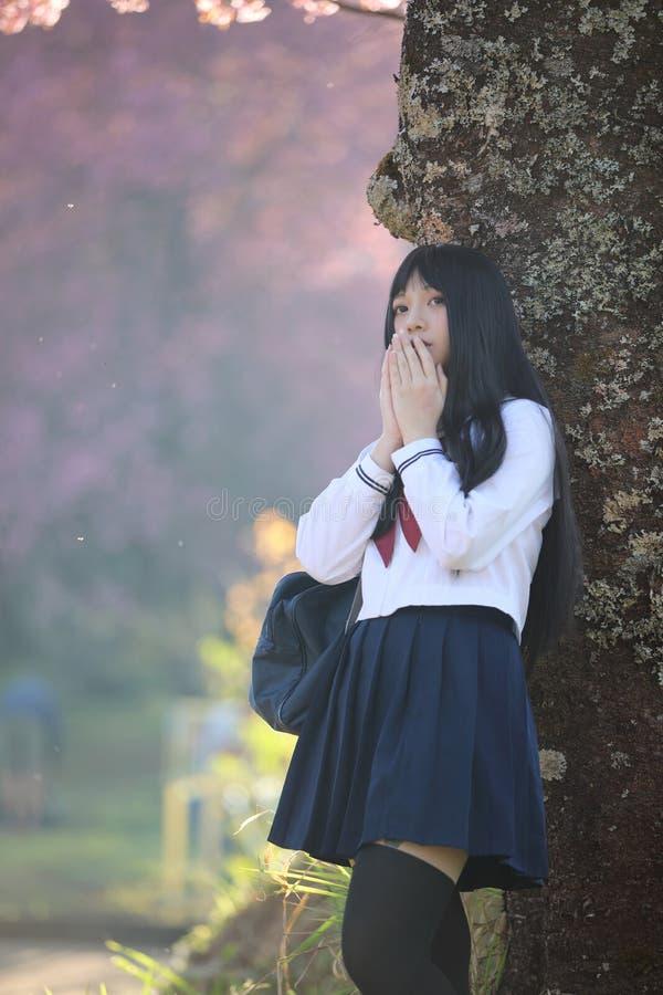 Japończyk dziewczyny szkolna suknia z Sakura kwiatu naturą obrazy stock