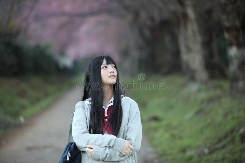 Japończyk dziewczyny szkolna suknia z Sakura kwiatu naturą zdjęcie royalty free