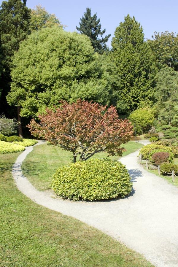 Japończyka malowniczy ogród zdjęcie stock