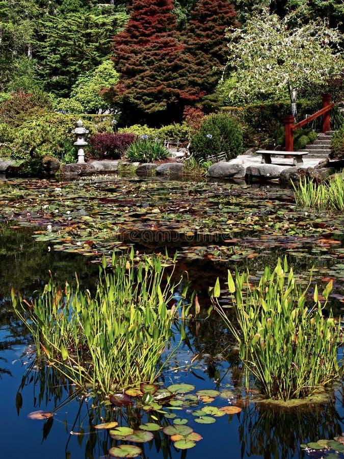 Japończyka ogród przy brzeg akrów stanu parkiem zdjęcia royalty free