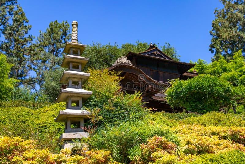 Japończyka Ogrodowy położenie zdjęcie royalty free