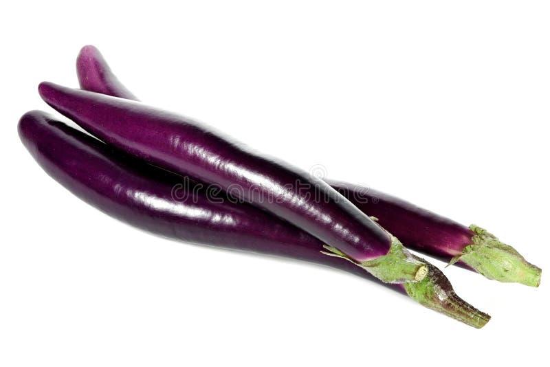 Japońscy aubergines obraz royalty free