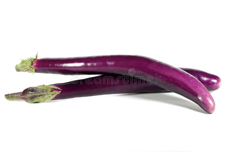 Japońscy aubergines fotografia royalty free