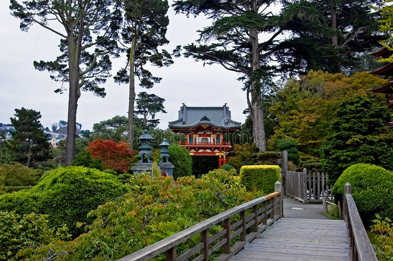 japońska ogrodowa herbaty. fotografia stock