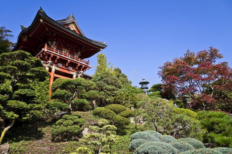 japońska ogrodowa herbaty obrazy stock
