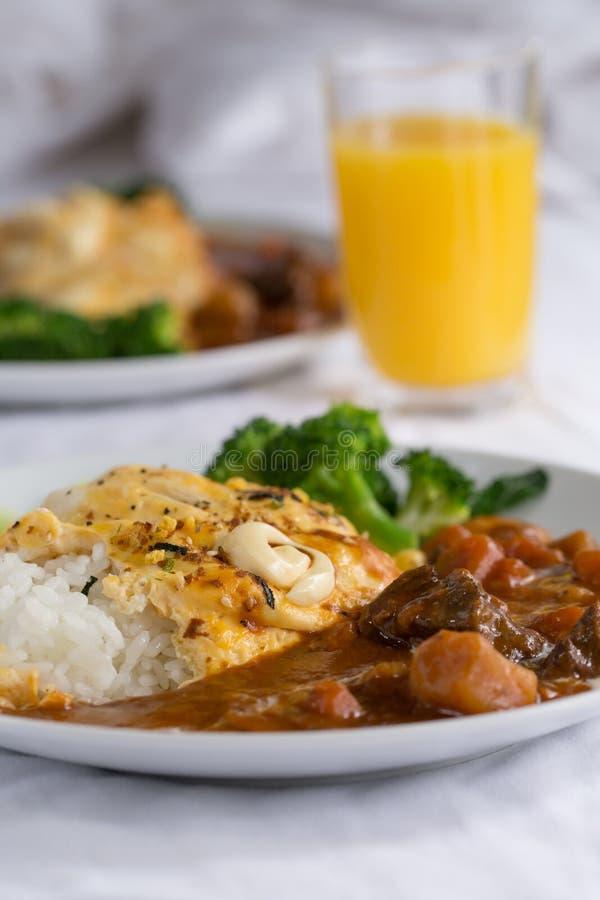 Japoński curry fotografia royalty free