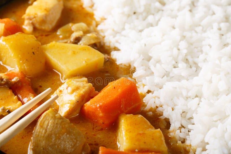 Japoński curry z ryżowym Kare raisu makro- horyzontalny zdjęcia royalty free
