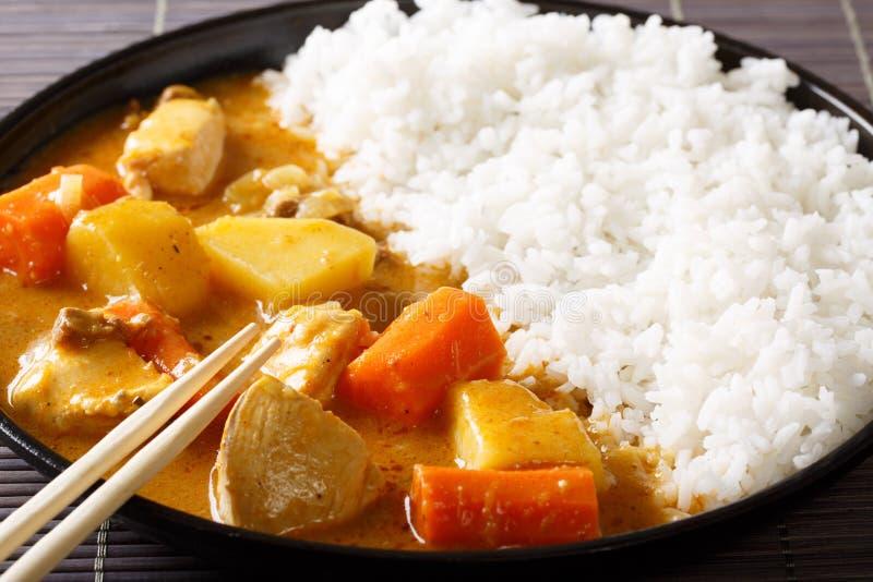 Japoński curry z ryżowym Kare Raisu zakończeniem horyzontalny zdjęcia royalty free