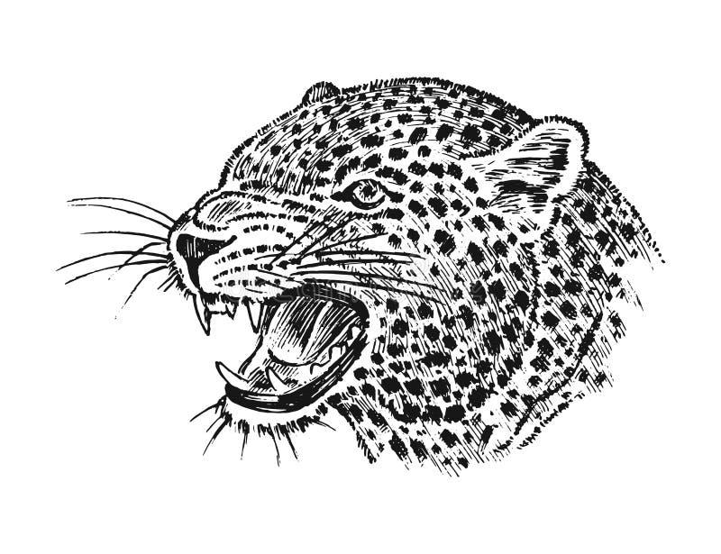 Japoński Dziki lampart Portreta azjata kot profil głowa lub twarz Tatuaż grafika Grawerująca ręka rysująca w starym roczniku ilustracji