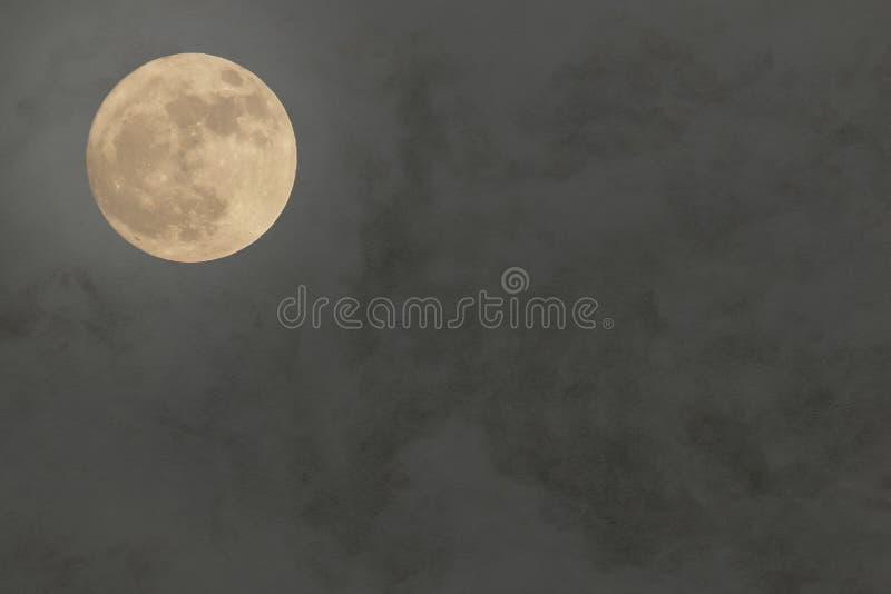 Japoński księżyc w pełni na tradycyjnym papierowym tle zdjęcie royalty free
