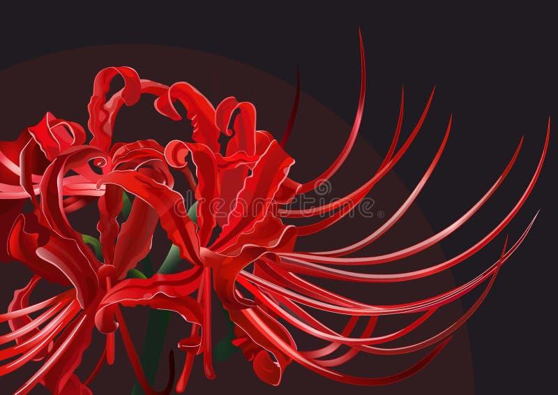 japoński kwiaty obrazy stock
