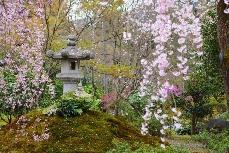 japoński park obrazy stock