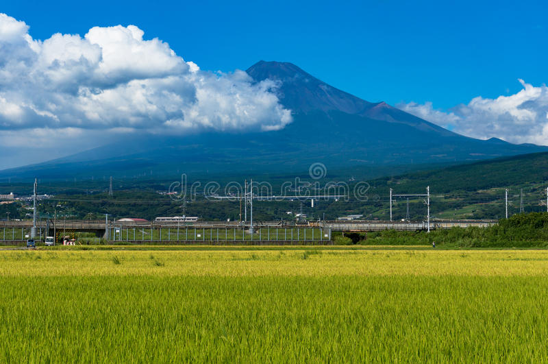 Japoński wieś krajobraz ryżu pole Fuji i Mt fotografia stock