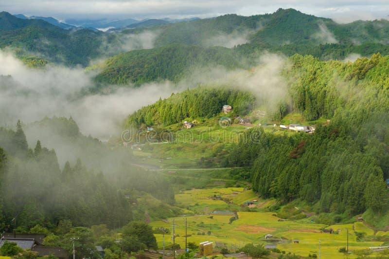 Japoński wiejski krajobraz ryż uprawia ziemię w wysokich górach zdjęcie royalty free