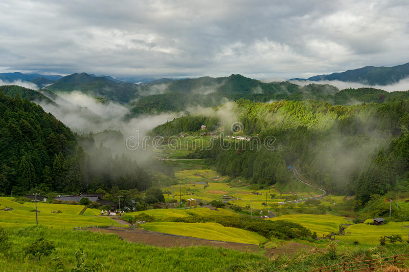 Japoński wiejski krajobraz z ryż tarasuje w halnym lesie fotografia royalty free