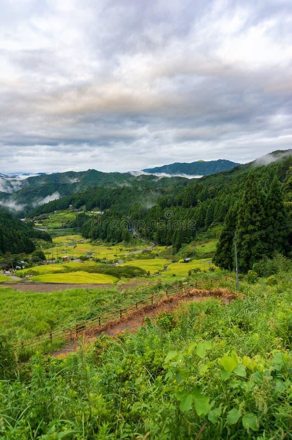Japoński wiejski krajobraz z ryżu pola tarasami obraz stock