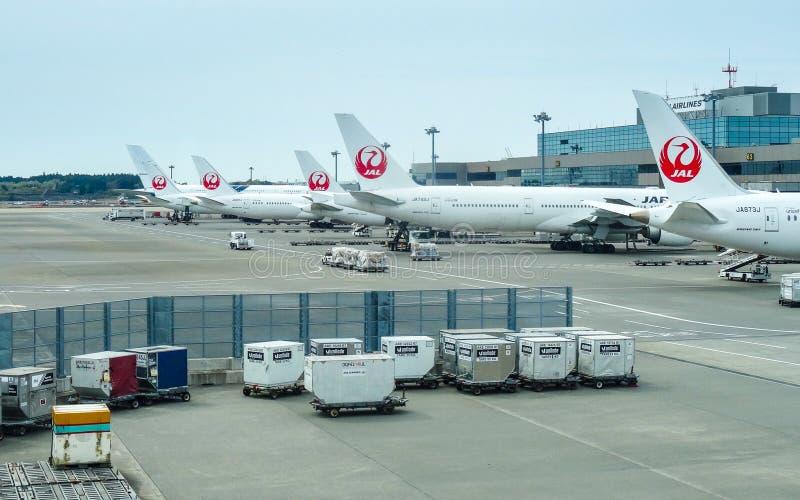 JAPON, TOKYO - 17 AVRIL 2019 : Une ligne d'avions JAL de Japan Airlines photos libres de droits