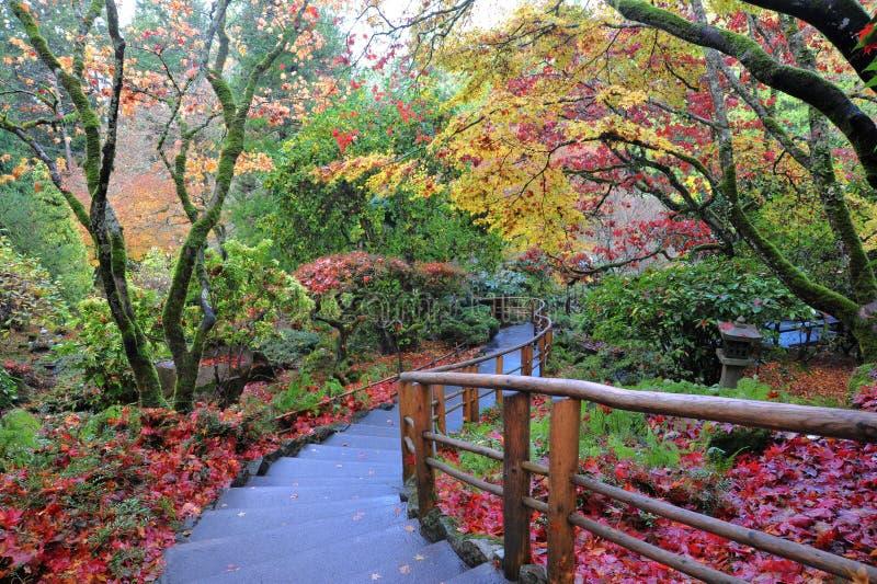 Japonais de jardin photo libre de droits