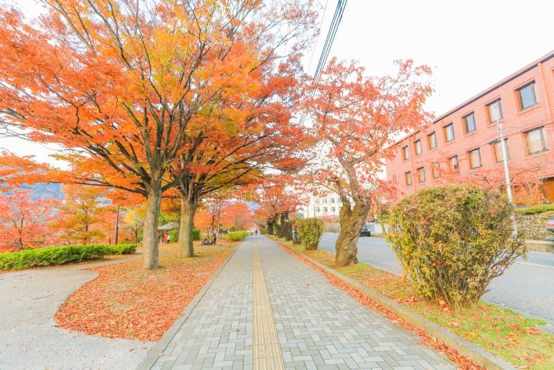 Japonia jesień Nagano prefektura, Japonia fotografia royalty free