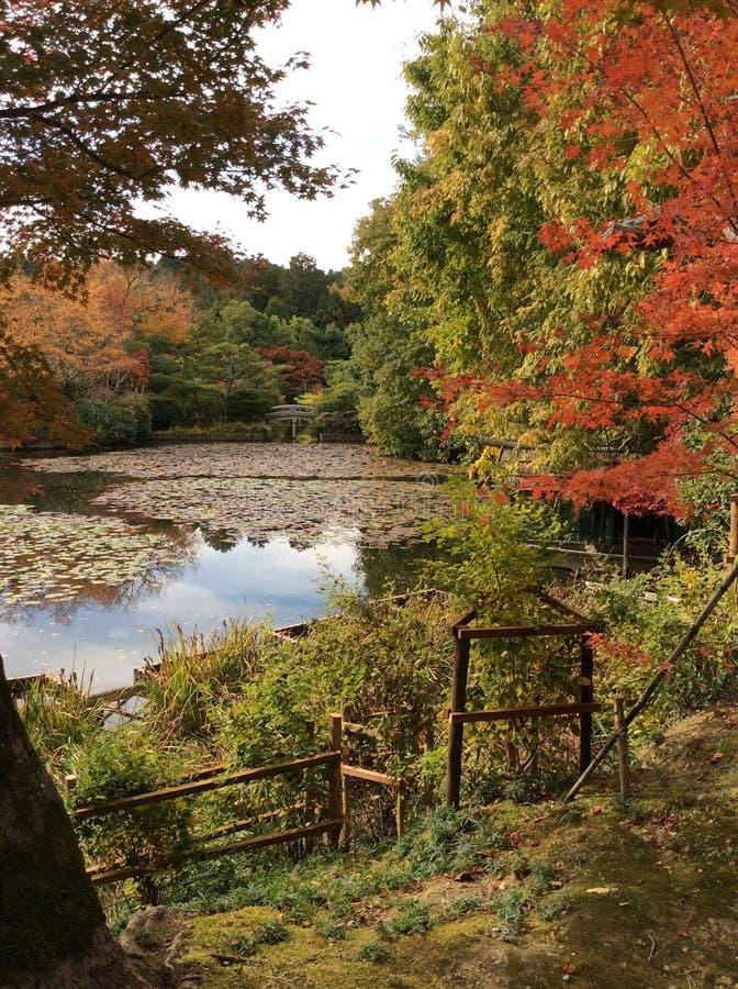 Japonia park fotografia stock