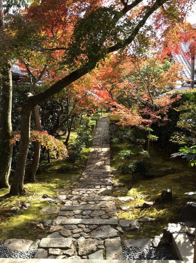 Japonia park obrazy stock