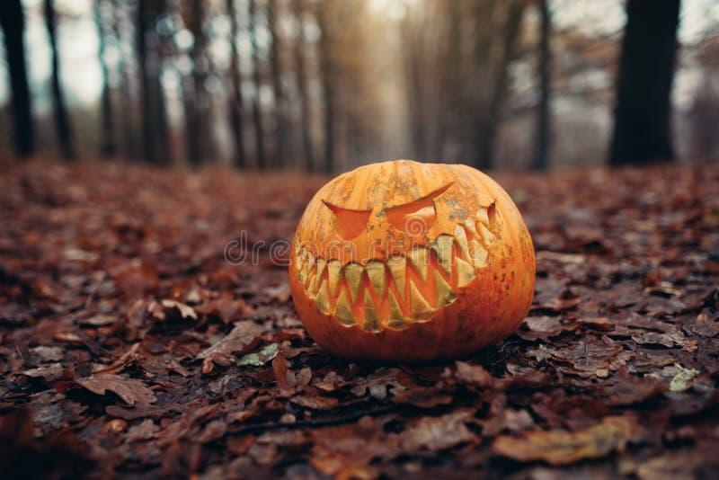 Jaque-o-lanterna de Dia das Bruxas com a cara de sorriso antropomorfic nas folhas de outono exteriores foto de stock