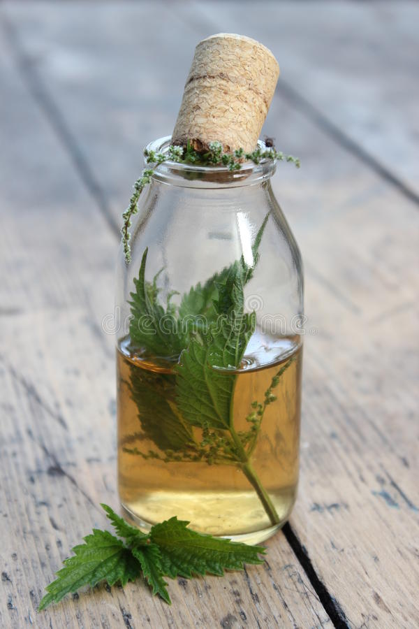 Jar with alcohol tincture and nettle leaves stock photos