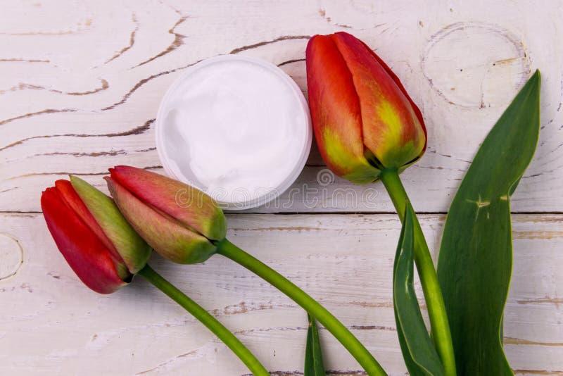 Jar av moisturizer kräm med röda tulpaner på vit träbakgrund Överkant arkivfoto