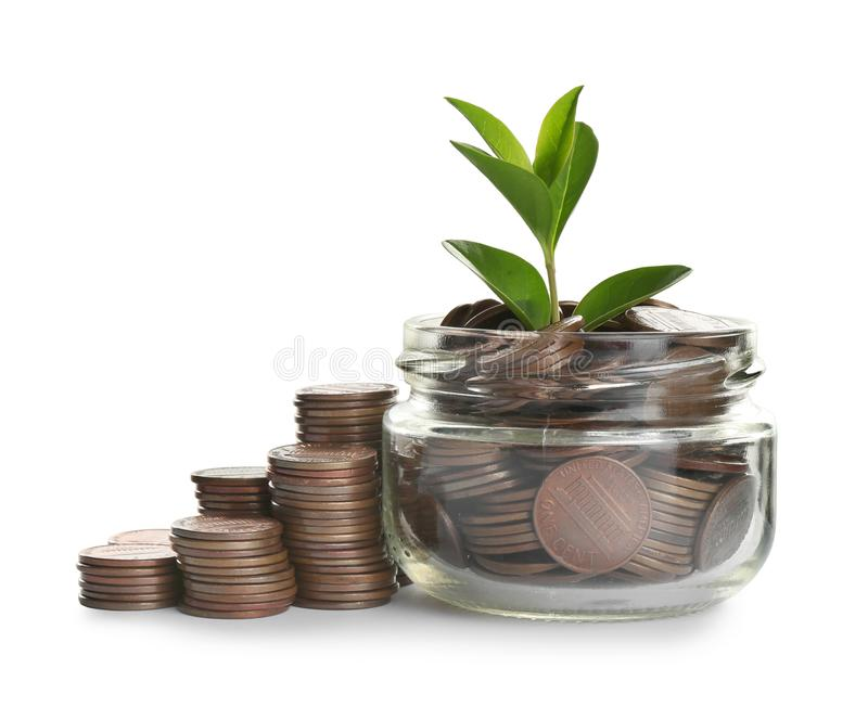 Jar with green plant and coins isolated. On white royalty free stock photography