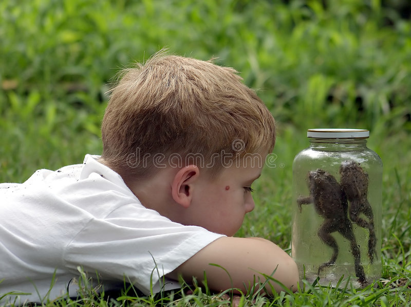 Download Jar Hopping stock image. Image of curiousity, container - 173863